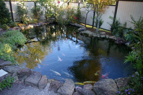 Pin by sandra jones on k o i f i s h pinterest for Koi pond installation