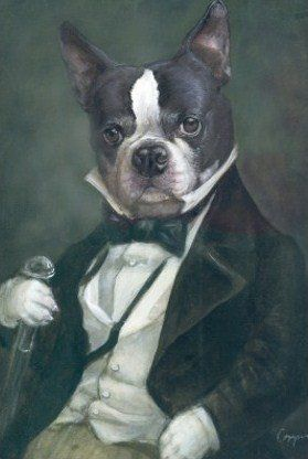 Boston Terrier Art.