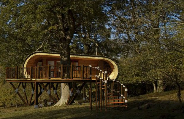 Really cool tree house three houses pinterest for Really cool houses