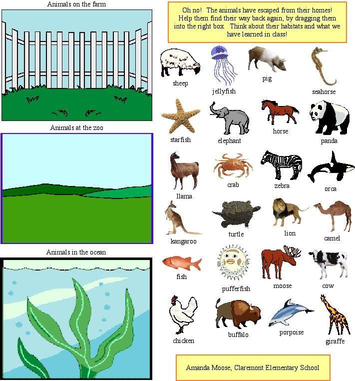Habitats Worksheets Ks2 – Animal Habitat Worksheets