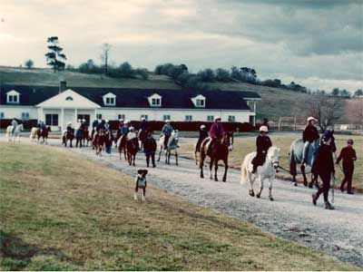 pony rides (S HIghlands- Sutton Farm)
