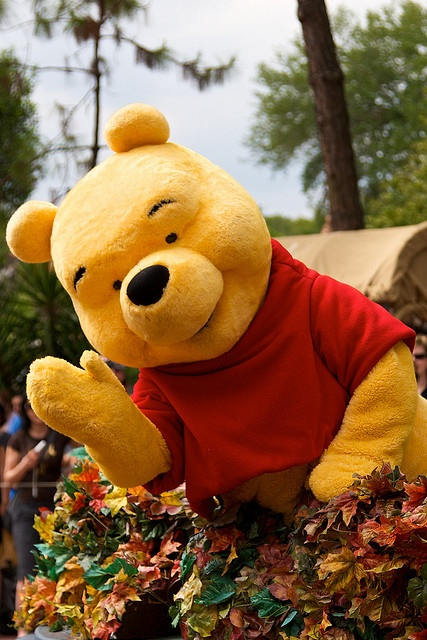 shop disney pooh bear - photo #42