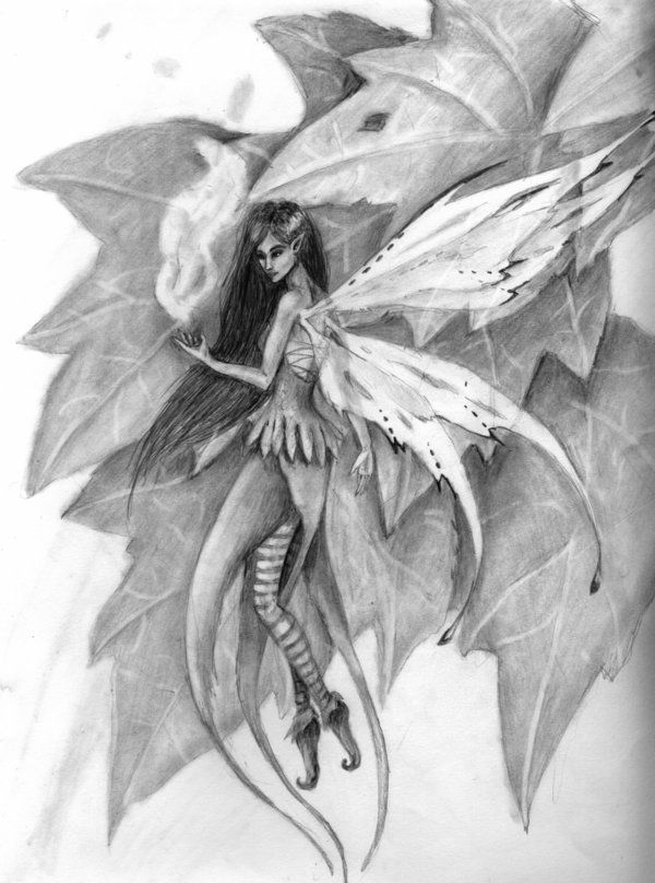 exotic fairies | Exotic Fairy Sketches Drawings http://amandakathryn ...