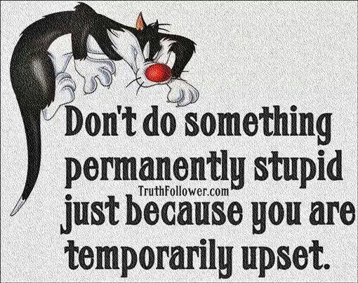 Sylvester The Cat Quotes Quotesgram