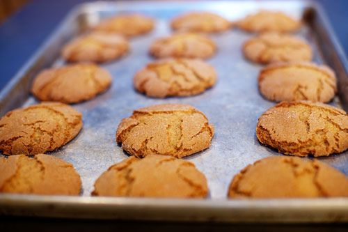 spicy molasses cookies these are my favorite molasses cookies and it s ...