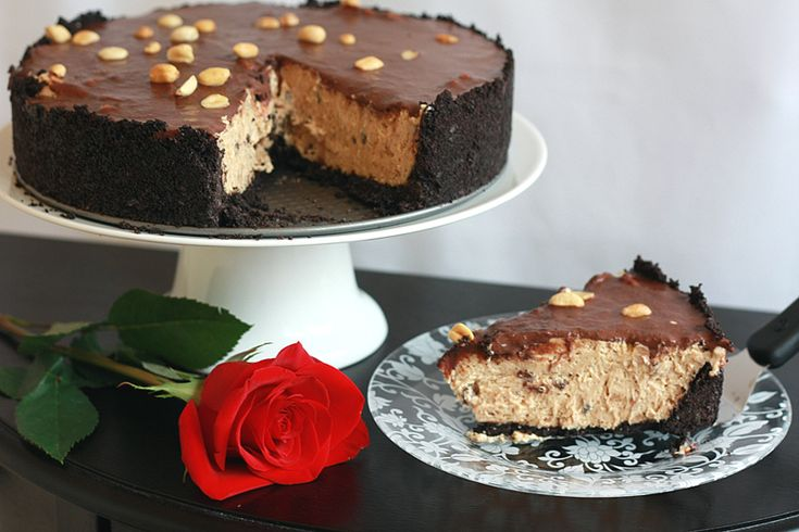 ... Peanut Butter Torte. Perfect for the peanut butter & chocolate combo