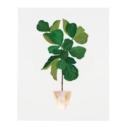 Fiddle Leaf Fig Print | Lulu and Georgia