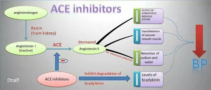 Image result for ACE inhibitors