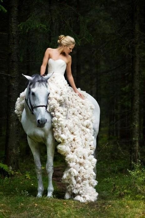 Horse wedding  #HitchedInLR  #LoefflerRandall