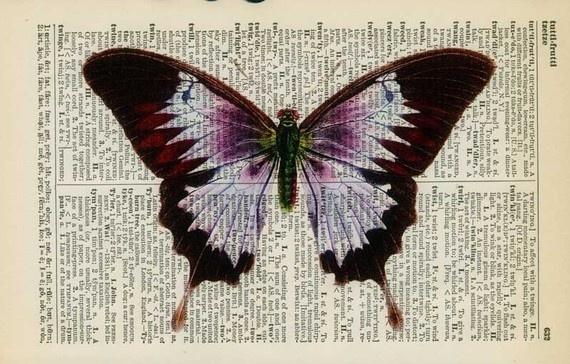 vintage violet butterfly artwork