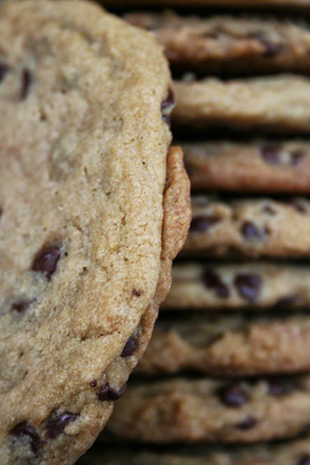 Copycat Panera Chewy Chocolate Chip Cookies Recipe ~ Says: Wow ...