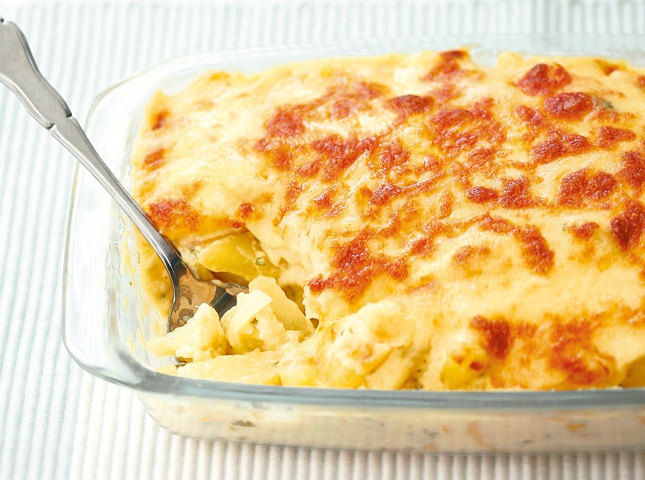 blanketed in creamy sauce and covered in a golden melted cheese crust ...