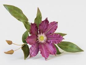 Мастер-класс. Белая лилия из фоамирана Цветы своими руками Pinterest