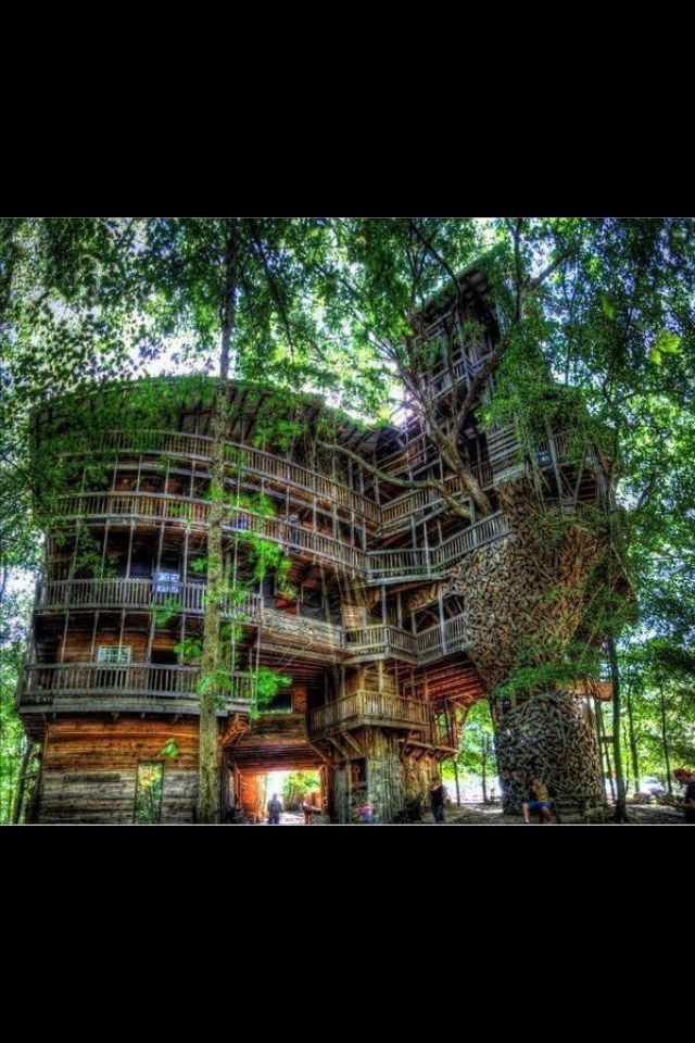 Coolest Tree House Ever Tree House Pinterest