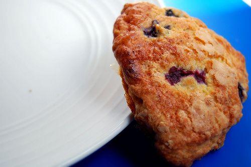 Sugar Plum: Blueberry, White Chocolate & Toasted Walnut Scones