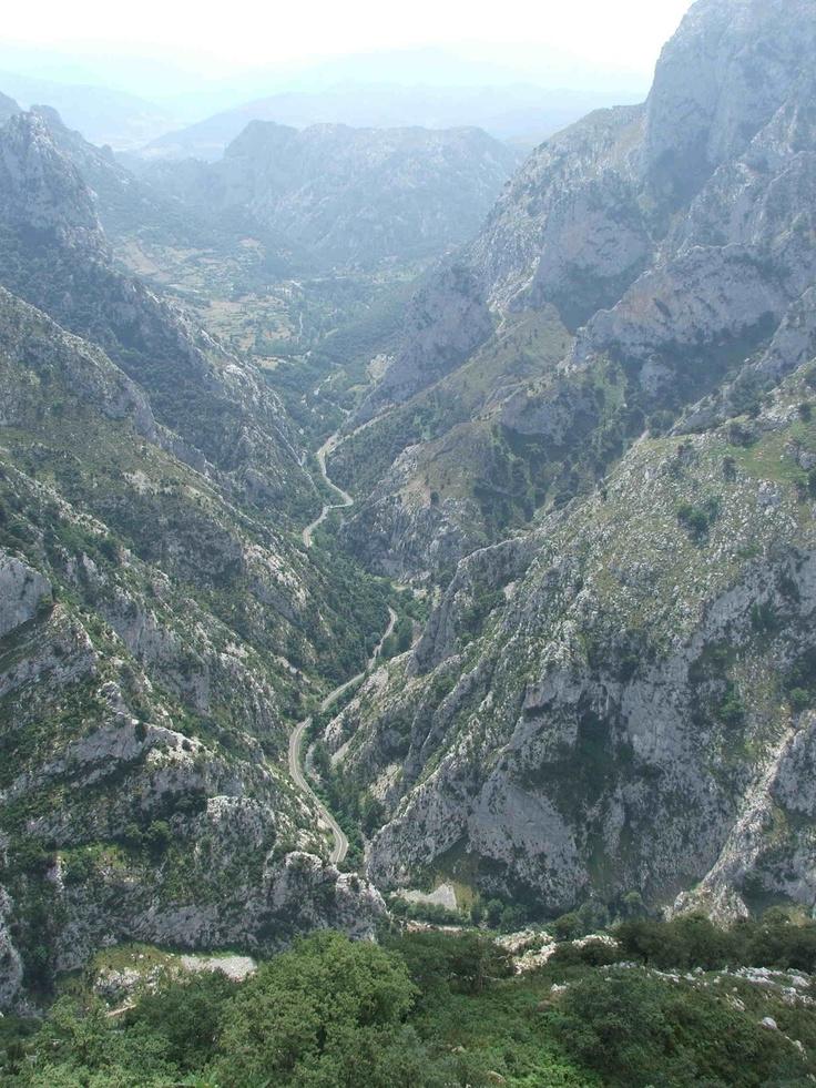 ecoturismo rural com:
