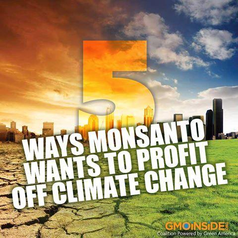 5 Ways Monsanto Wants To Profit Off Climate Change. More Here: http://www.motherjones.com/environment/2013/10/monsanto-profit-climate-change-corporation