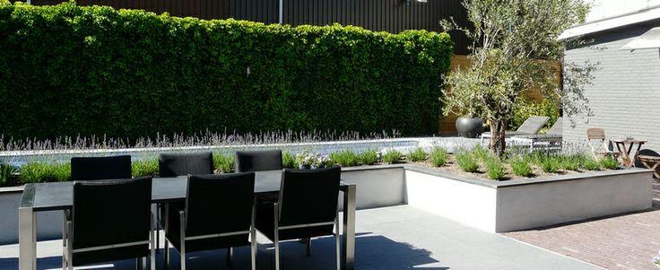 Verhoogde plantenbak (gestuct) : Plantenbakken en potten : Pinterest