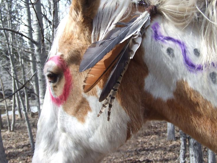 American Indian War Paint Symbols War paint - the native american war horse was highly regarded by its owner,