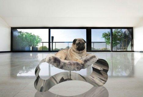 para el principe!!.....  Home cocooning: raw pet decoration ideas