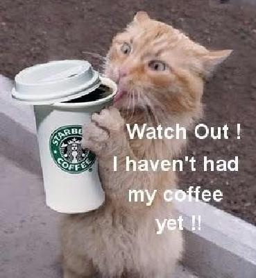 LOL...must be what I look like in the mornings :)
