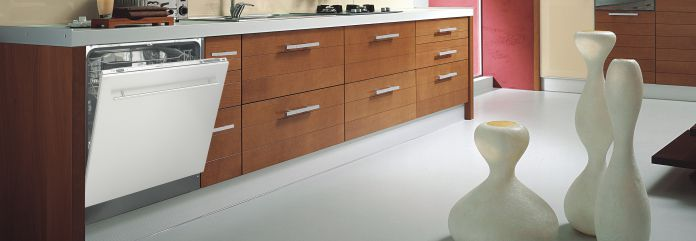 Countertop Dishwasher India Online : Stainless Steel Dishwasher: Stainless Steel Dishwasher India