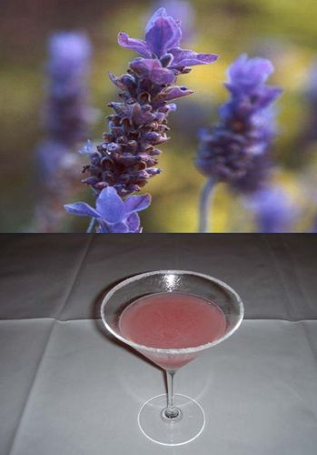 More like this: simple syrup , syrup recipes and syrup .