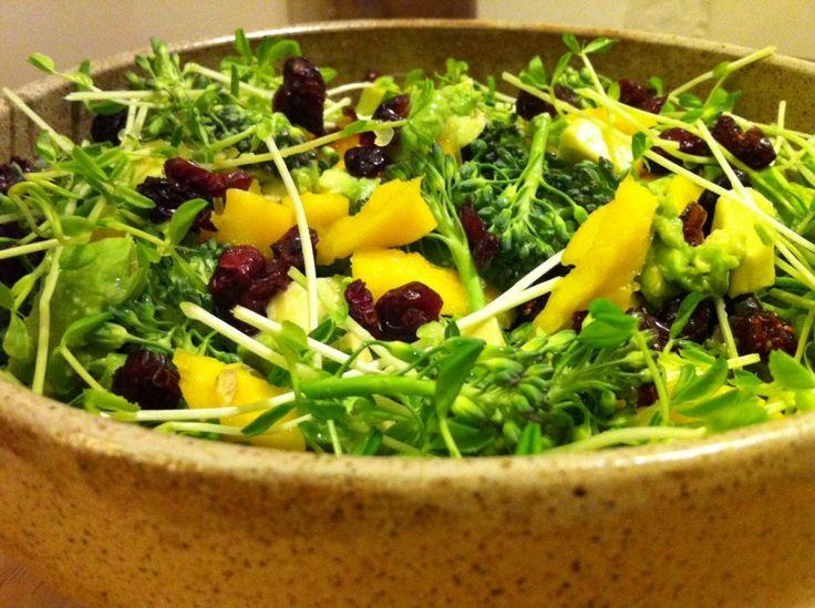 Creamy Cranberry Broccolini Salad Recipe: 1/2 head red leaf lettuce 1 ...