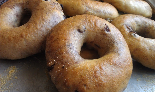 Cinnamon Raisin Bagels | Recipes I love | Pinterest