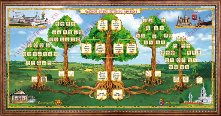 Общий порядок составление генеалогического древа