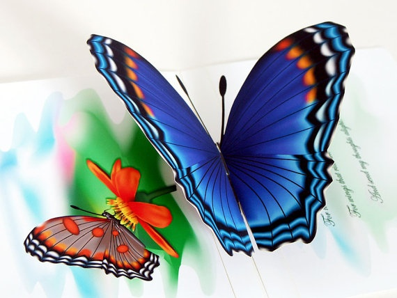 3D Pop up Blue Butterfly Card Any occasion New by CardNotions