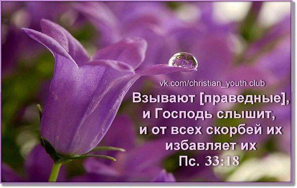 Христианские открытки с цитатами из библии 14