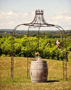 Vineyard Ceremony Arch