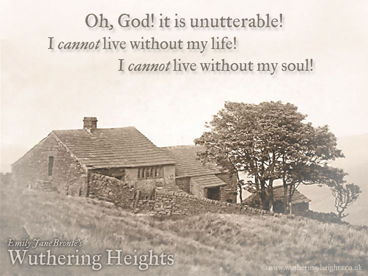 gothic elements in wuthering heights essay