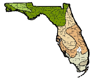 Florida USDA Hardiness Zone Map 1990  For The Garden