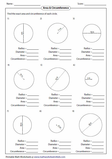 Area of circle worksheet grade 8