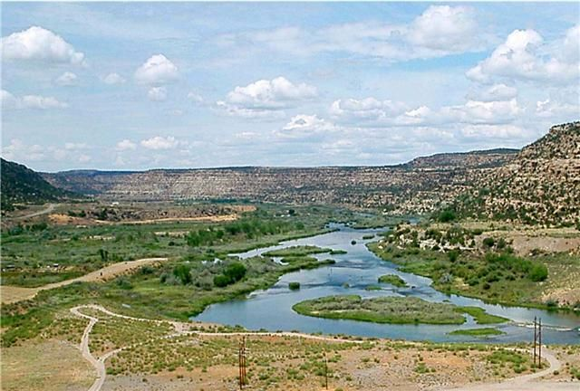 Pin by tracy murphy on rivers boats fish et cetera for Fly fishing new mexico