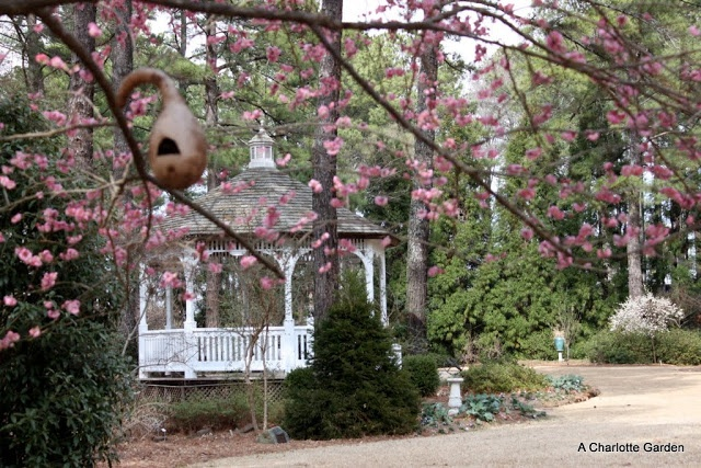 Fayetteville cape fear botanical garden fayetteville - Botanical garden fayetteville nc ...