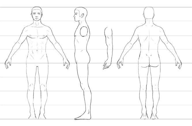 Character Design Themes : Male body turnaround art pinterest
