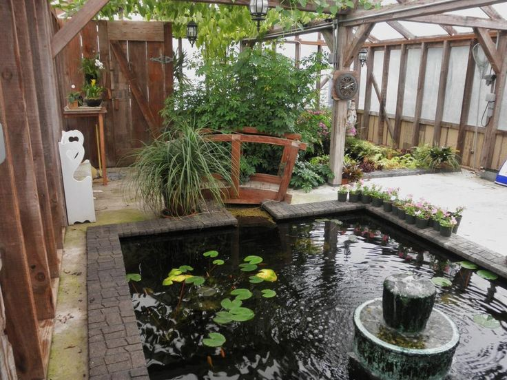 I need this greenhouse pond setup garden pinterest for Outdoor fish pond setup