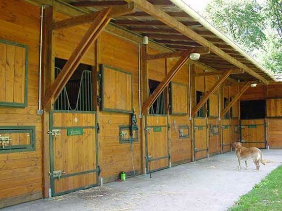 horse stall ideas country and equestrian design pinterest - Horse Stall Design Ideas