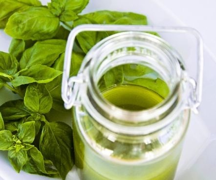 basil and olive oil. rinse basil, pat dry put basil and olive oil in ...