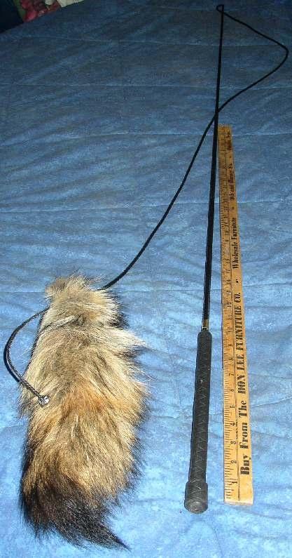 lunge whip flirt pole for sale