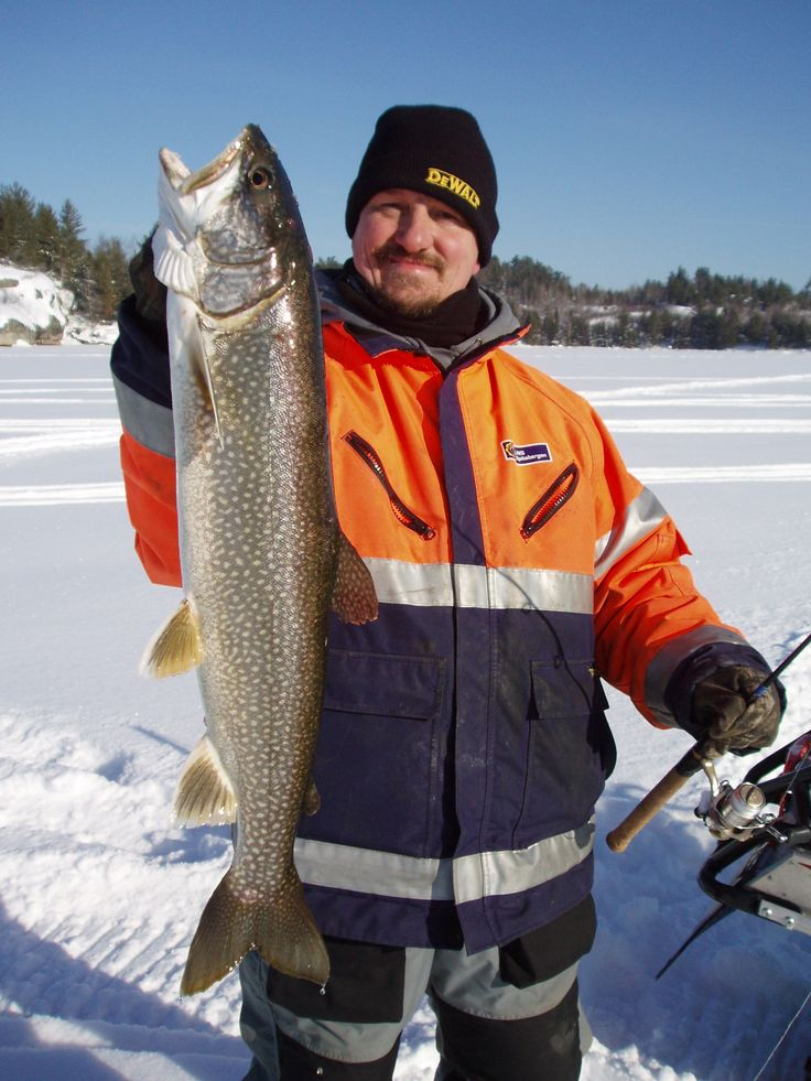 Pin by chris trinkner on muskie bay resort nestor fall for Ice fishing canada