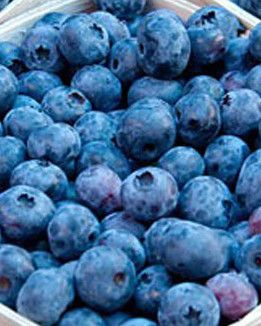 Blueberry Yogurt Multigrain Pancakes | Food & Drink | Pinterest