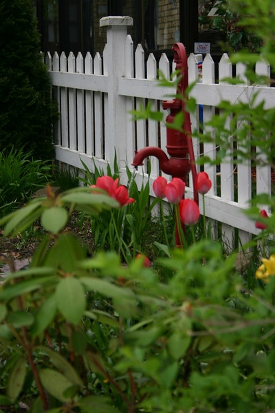 Red tulips by the water pump fountain