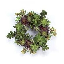 Succulent Wreath for potting shed?