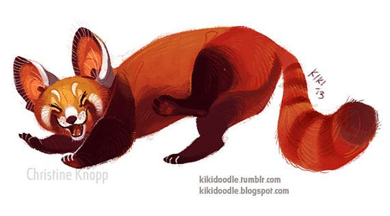 Super happy red panda sticker or magnet by Kikidoodle on EtsyRed Panda Drawing Furry