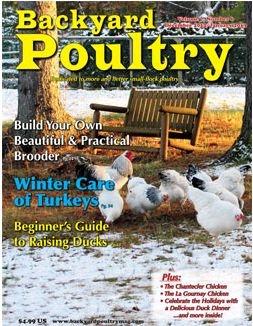 backyard poultry magazine this n that pinterest
