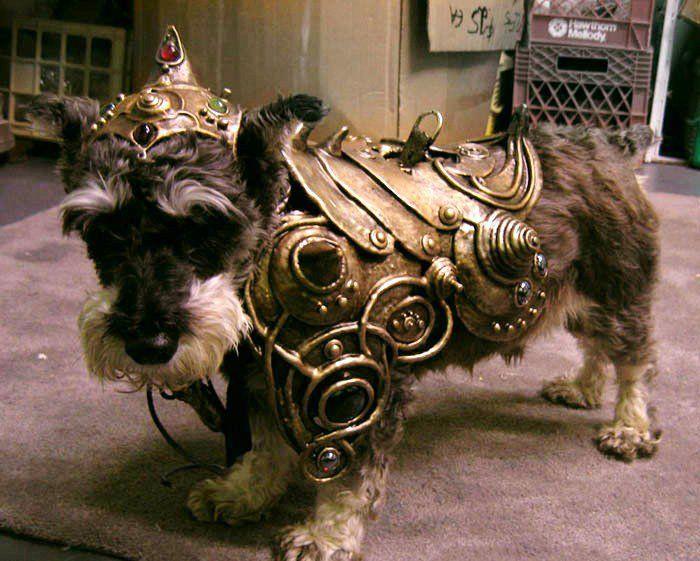 fallout 4 how to get a junkyard dog